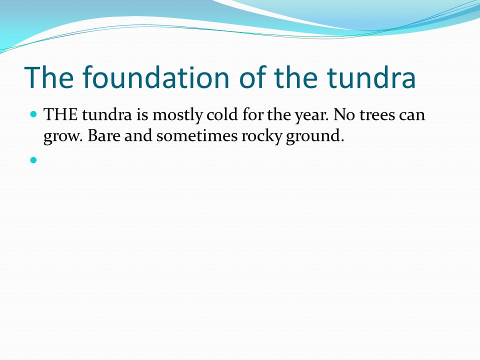 The foundation of the tundra