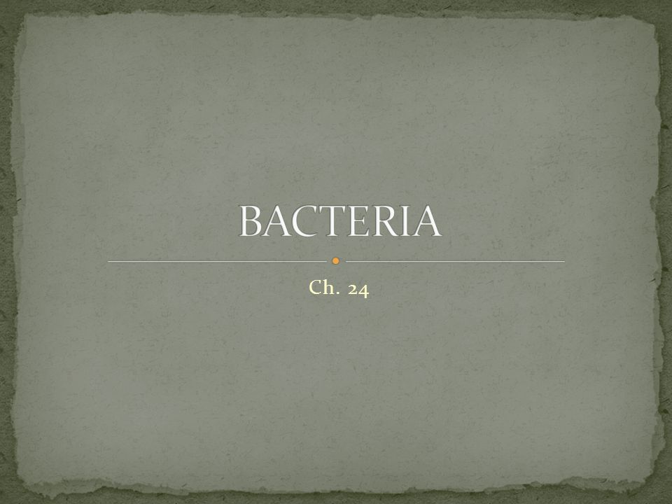 BACTERIA Ch. 24