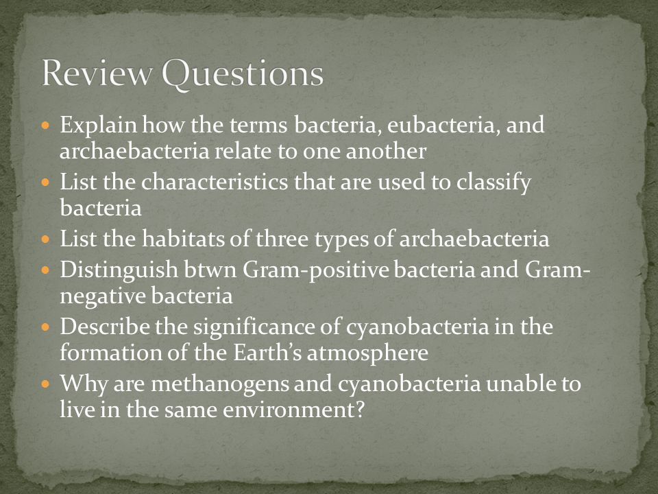 Review Questions Explain how the terms bacteria, eubacteria, and archaebacteria relate to one another.
