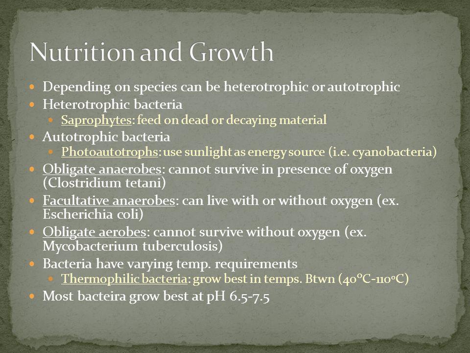 Nutrition and Growth Depending on species can be heterotrophic or autotrophic. Heterotrophic bacteria.