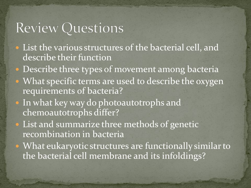 Review Questions List the various structures of the bacterial cell, and describe their function. Describe three types of movement among bacteria.