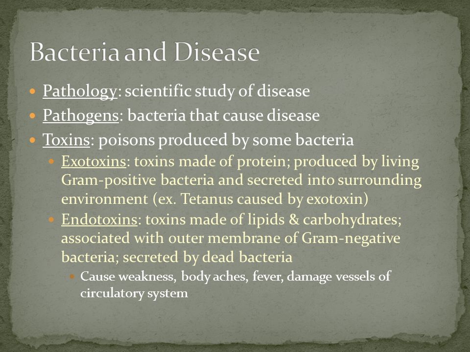 Bacteria and Disease Pathology: scientific study of disease