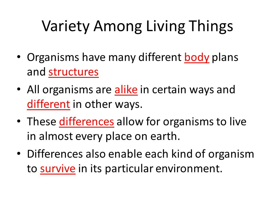 Variety Among Living Things