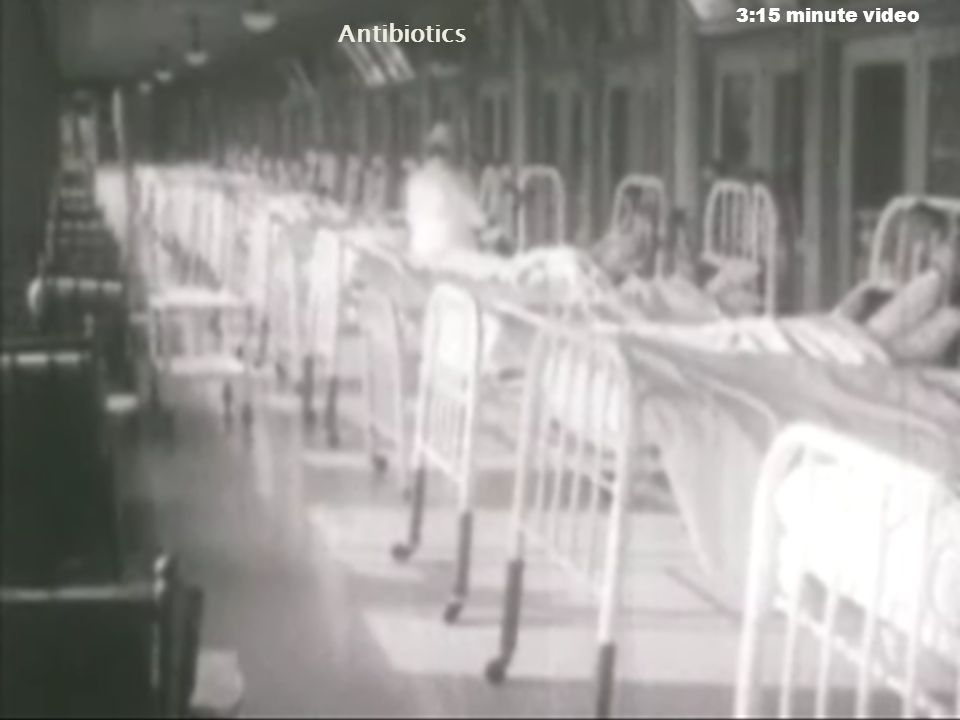 3:15 minute video Antibiotics