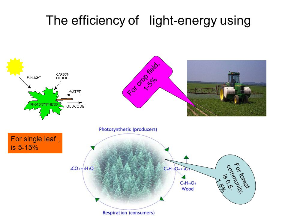 The efficiency of light-energy using
