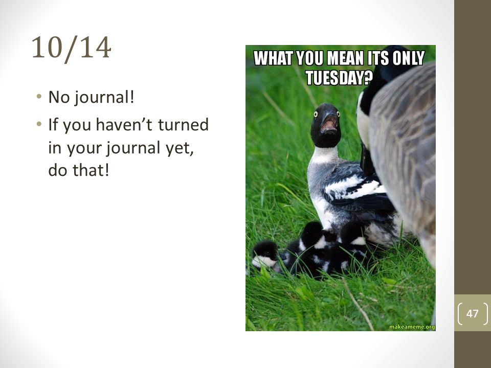 10/14 No journal! If you haven't turned in your journal yet, do that!