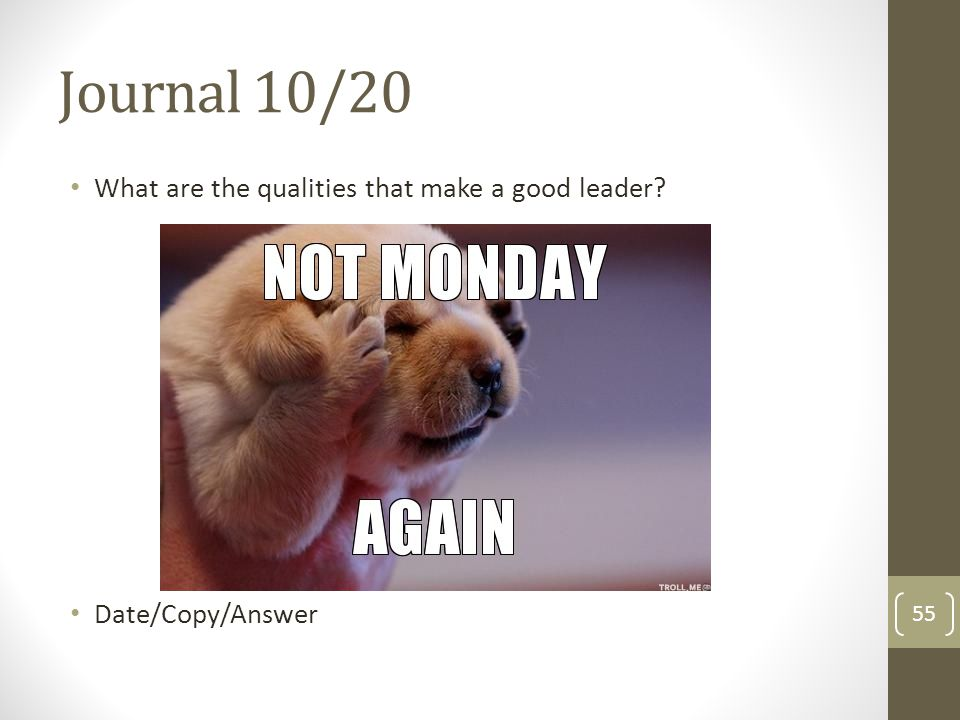 Journal 10/20 What are the qualities that make a good leader