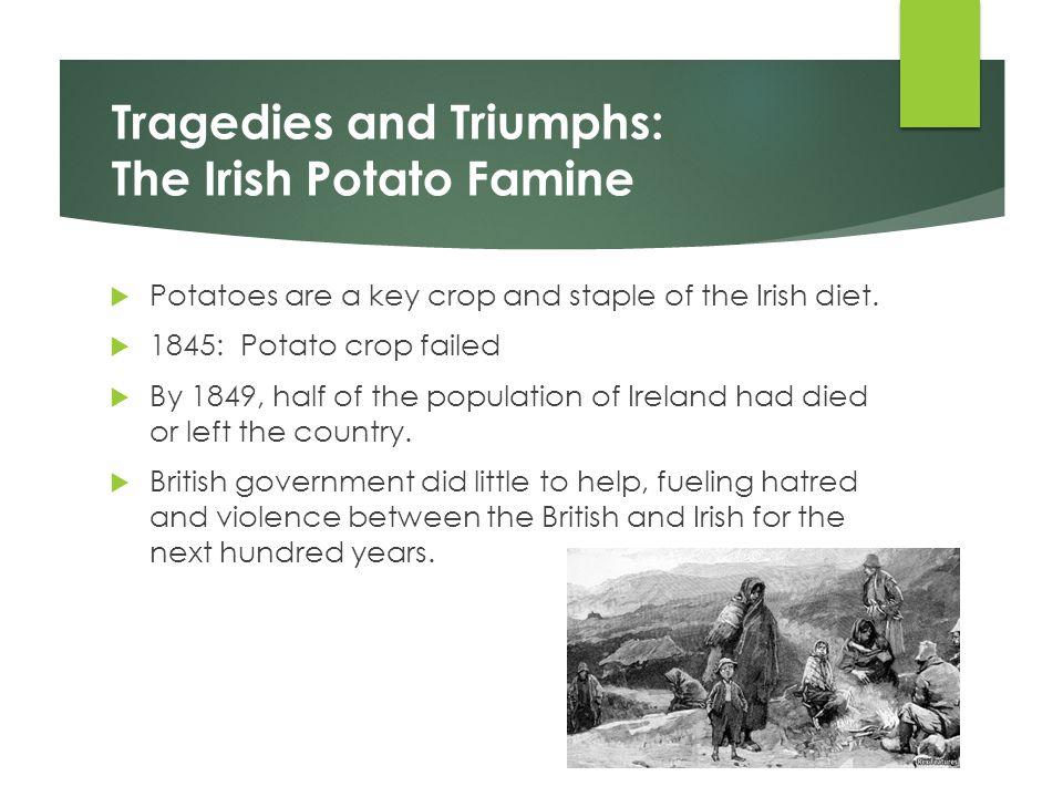 Tragedies and Triumphs: The Irish Potato Famine