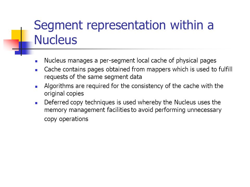 Segment representation within a Nucleus