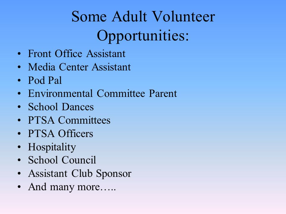 Some Adult Volunteer Opportunities: