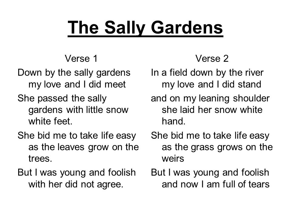 The Sally Gardens Verse 1