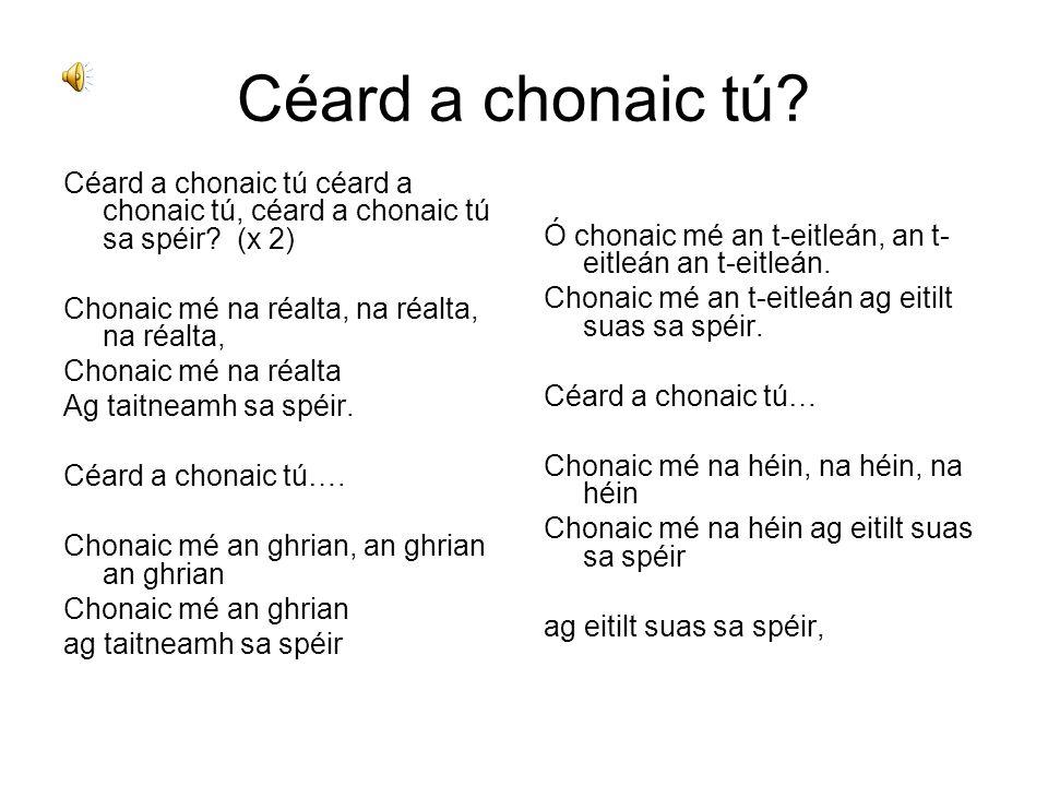 Céard a chonaic tú Céard a chonaic tú céard a chonaic tú, céard a chonaic tú sa spéir (x 2) Chonaic mé na réalta, na réalta, na réalta,