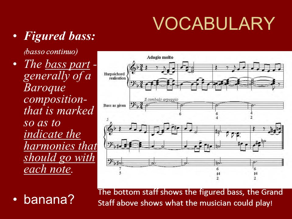 VOCABULARY banana Figured bass: (basso continuo)