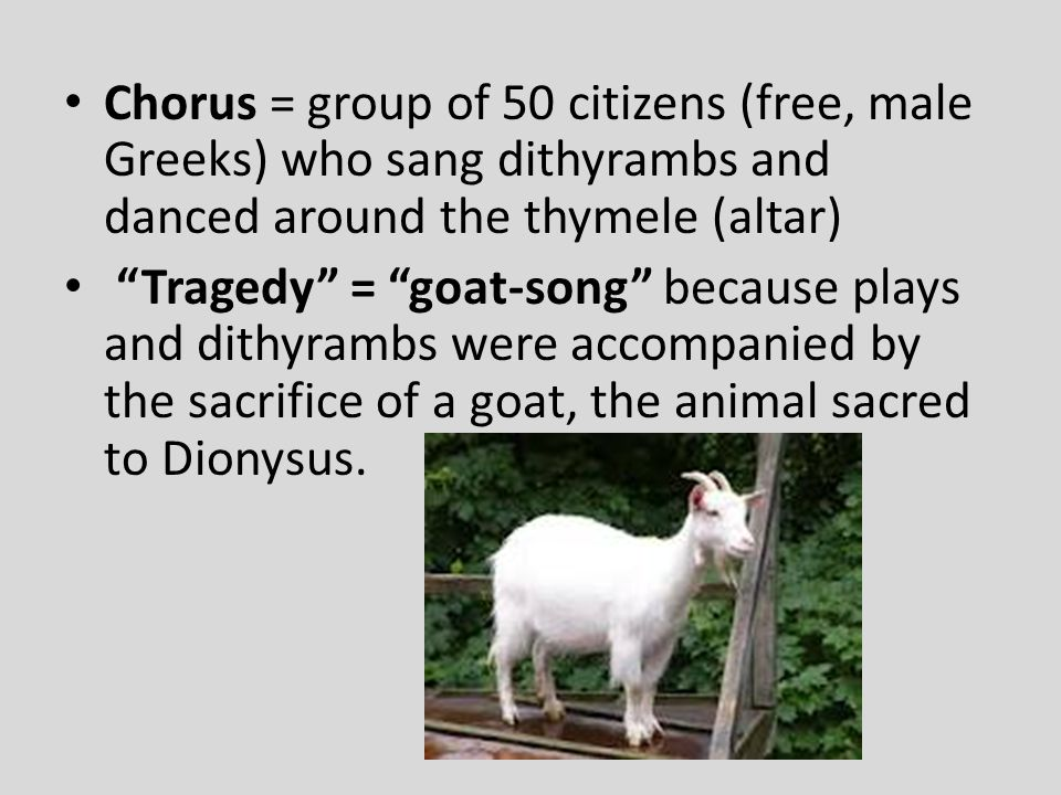 Chorus = group of 50 citizens (free, male Greeks) who sang dithyrambs and danced around the thymele (altar)