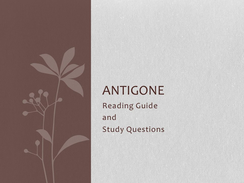 questions of antigone Question 12 ismene refuses to help antigone because she is: afraid of creon afraid of dead bodies already doing something that day greek drama and antigone test.