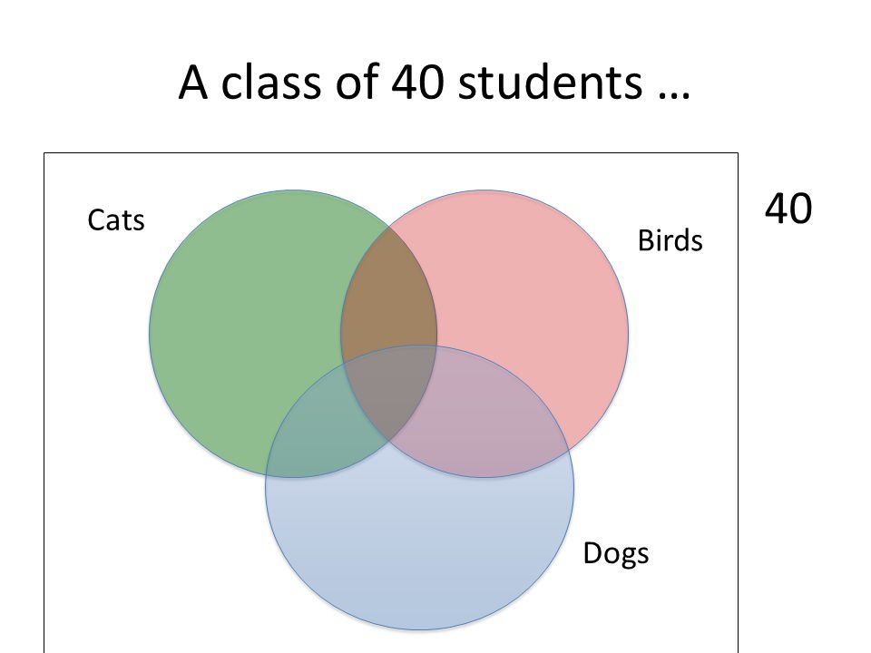 A class of 40 students … 40 Cats Birds Dogs