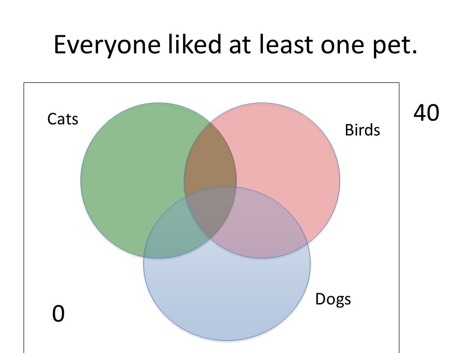 Everyone liked at least one pet.