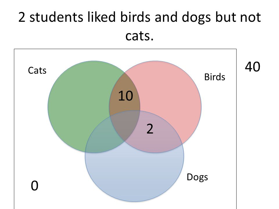 2 students liked birds and dogs but not cats.