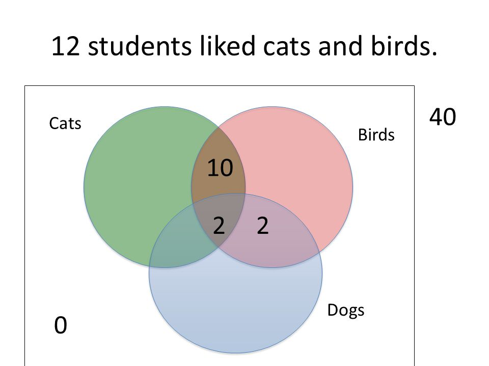 12 students liked cats and birds.