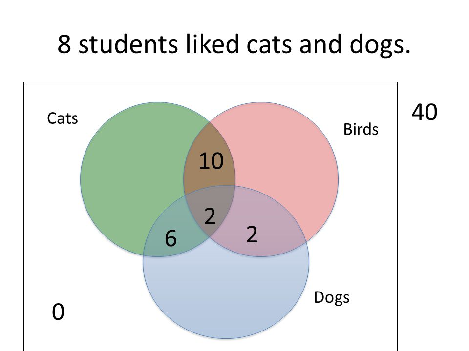 8 students liked cats and dogs.