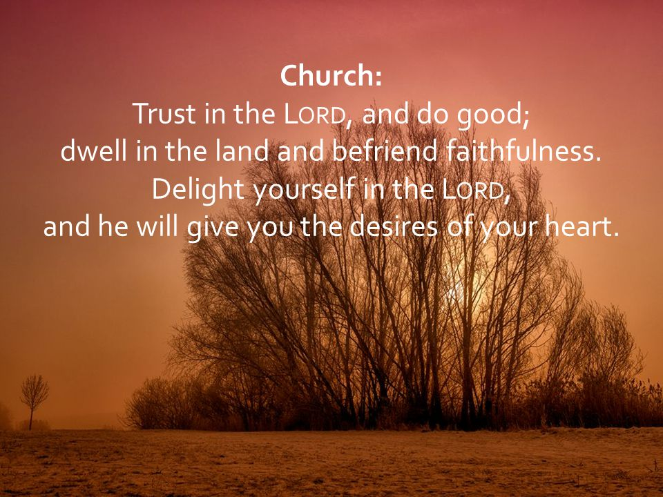 Trust in the Lord, and do good;