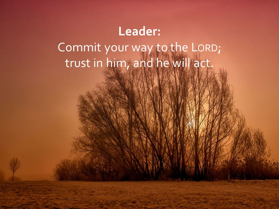 Commit your way to the Lord; trust in him, and he will act.