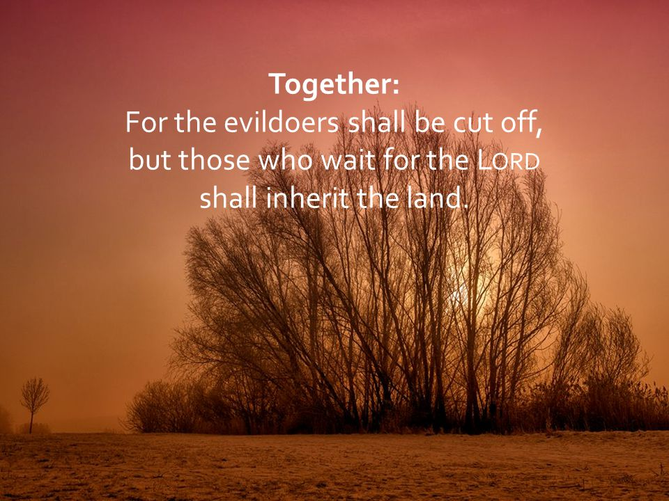For the evildoers shall be cut off, but those who wait for the Lord