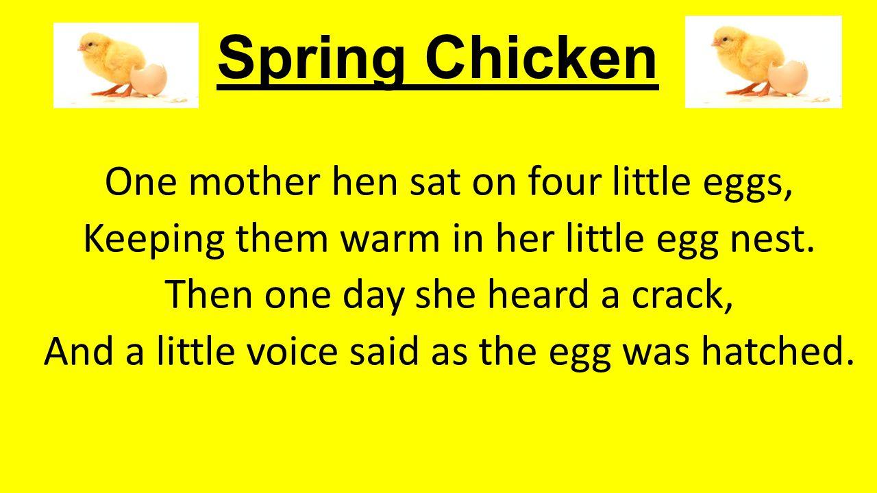 Spring Chicken One mother hen sat on four little eggs,