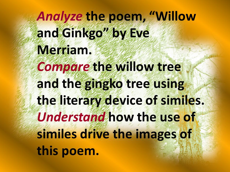 Analyze the poem, Willow and Ginkgo by Eve Merriam.