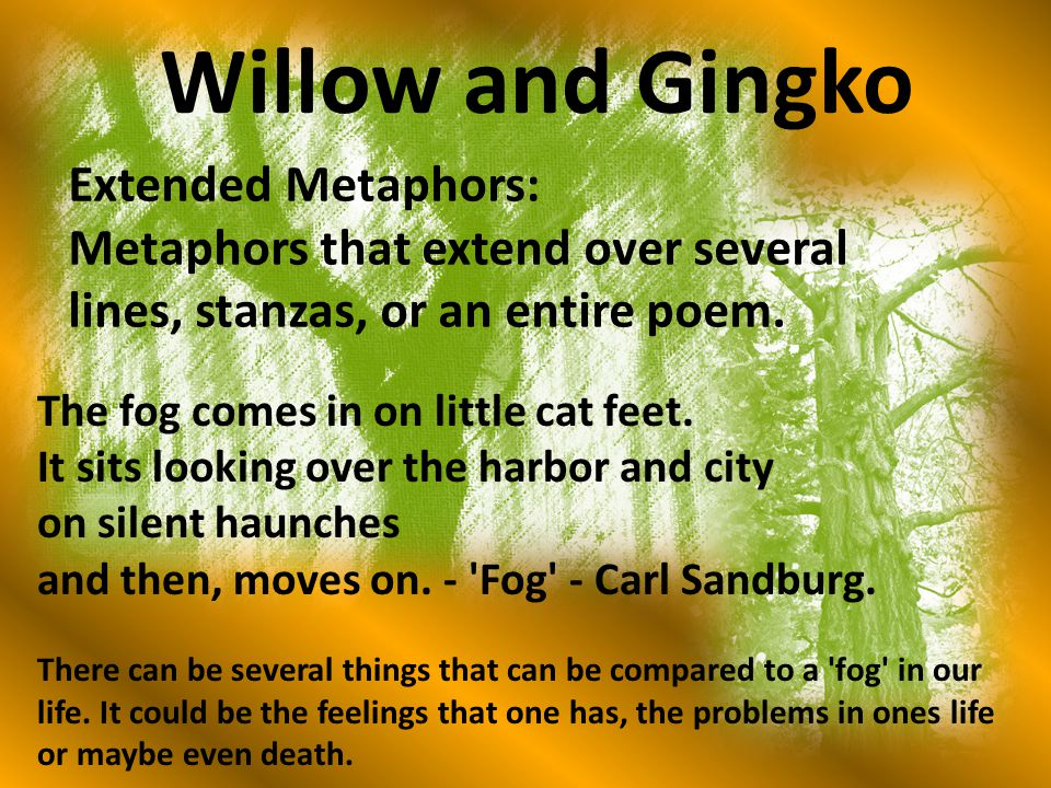 Willow and Gingko Extended Metaphors: