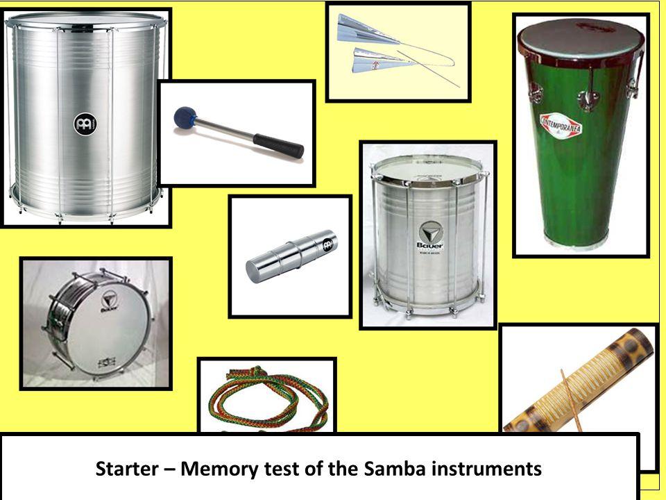 Starter – Memory test of the Samba instruments