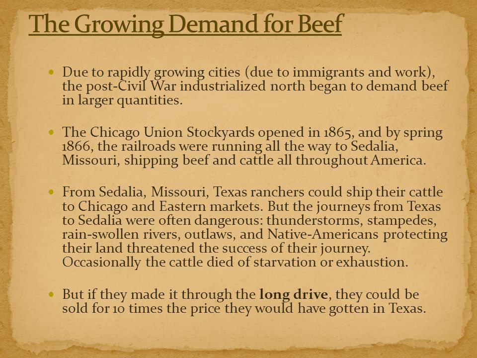 The Growing Demand for Beef