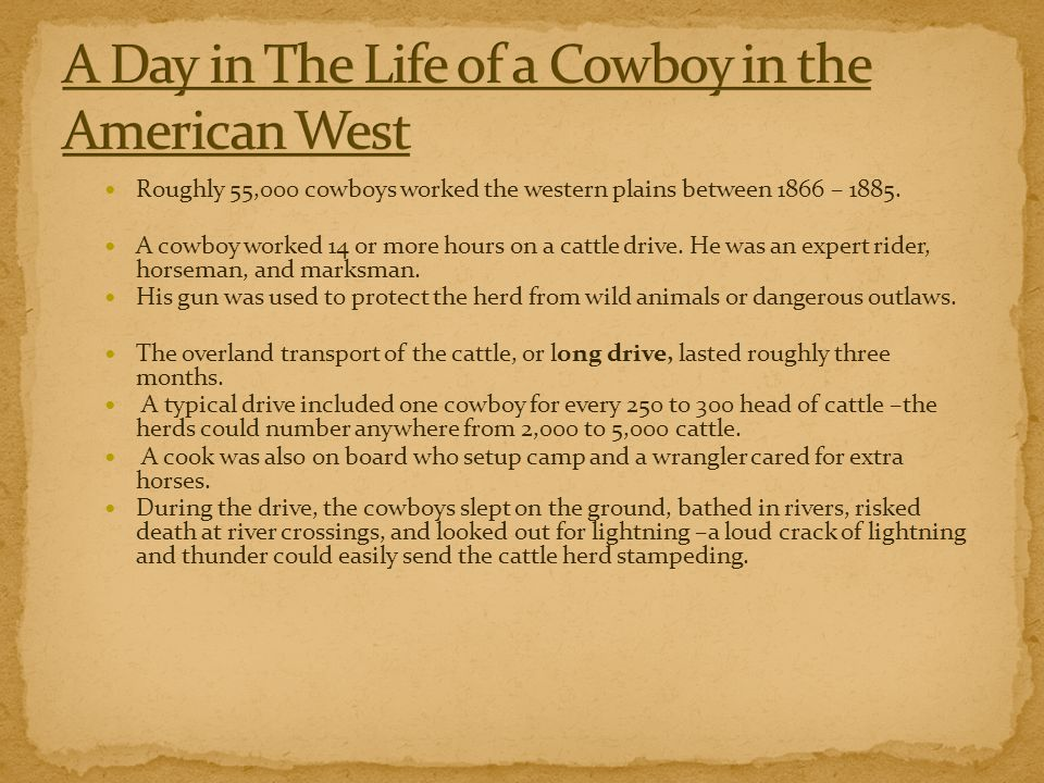 A Day in The Life of a Cowboy in the American West