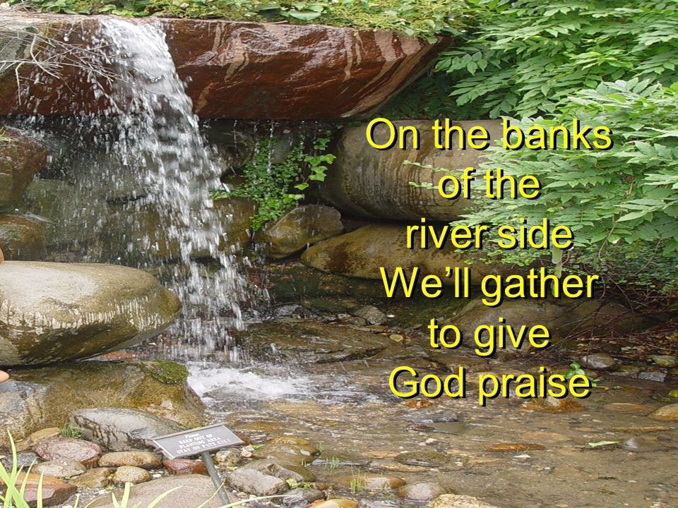 On the banks of the river side We'll gather to give God praise