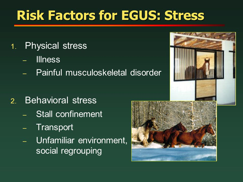 Risk Factors for EGUS: Stress