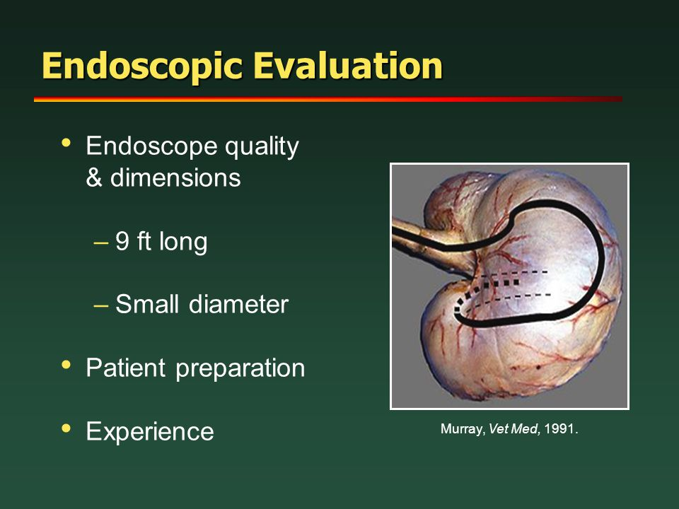 Endoscopic Evaluation