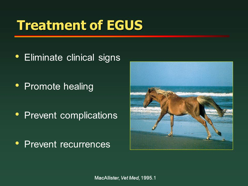 Treatment of EGUS Eliminate clinical signs Promote healing