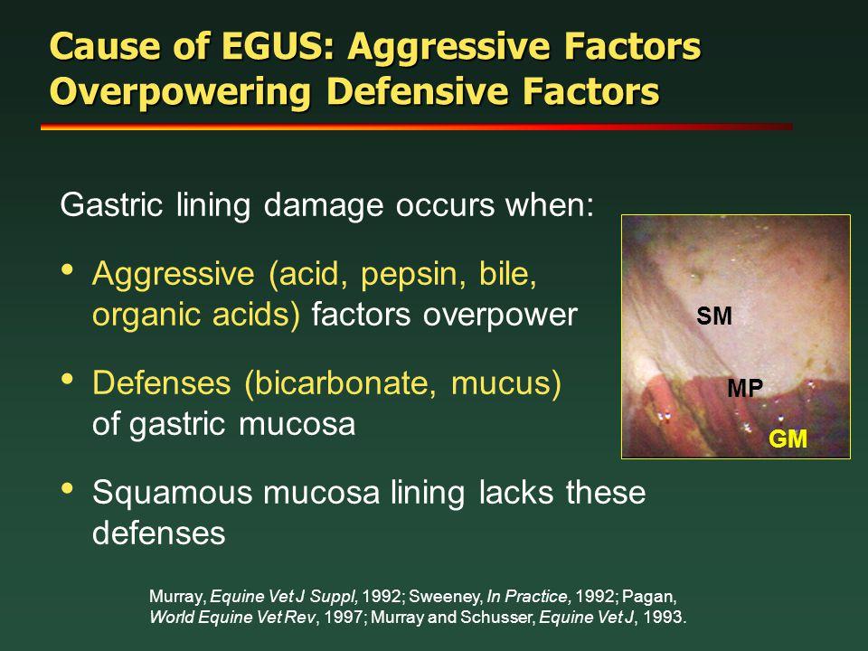 Cause of EGUS: Aggressive Factors Overpowering Defensive Factors