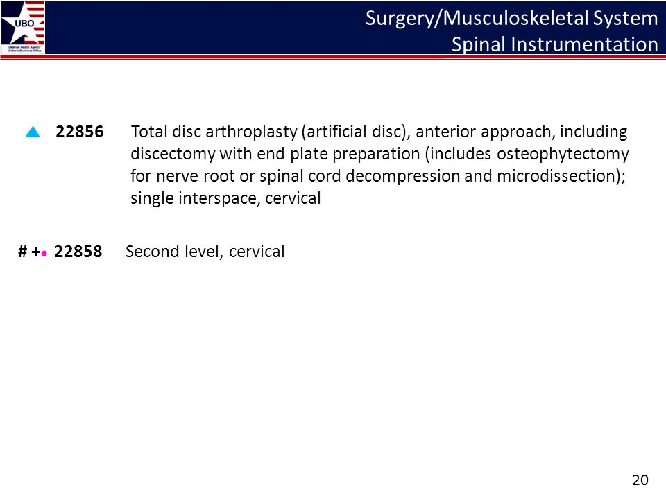 Surgery/Musculoskeletal System Spinal Instrumentation