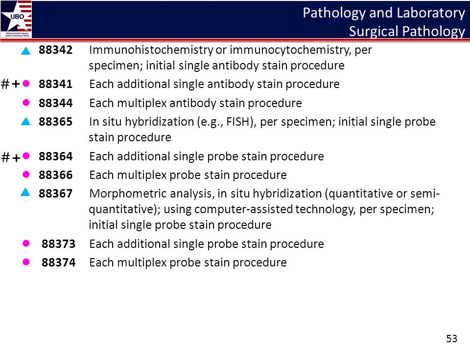 Pathology and Laboratory Surgical Pathology