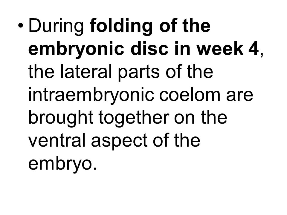 During folding of the embryonic disc in week 4, the lateral parts of the intraembryonic coelom are brought together on the ventral aspect of the embryo.