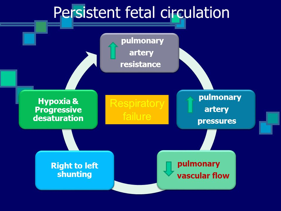 Persistent fetal circulation