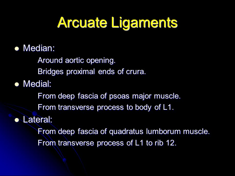 Arcuate Ligaments Median: Medial: Lateral: Around aortic opening.