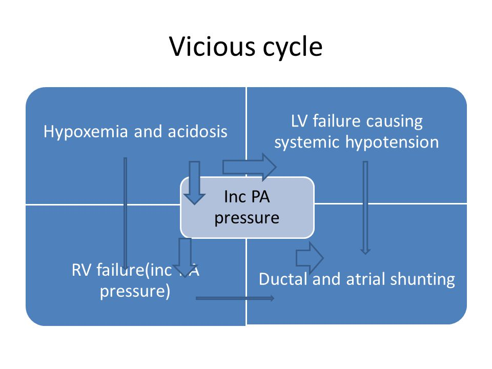 Vicious cycle Inc PA pressure Hypoxemia and acidosis