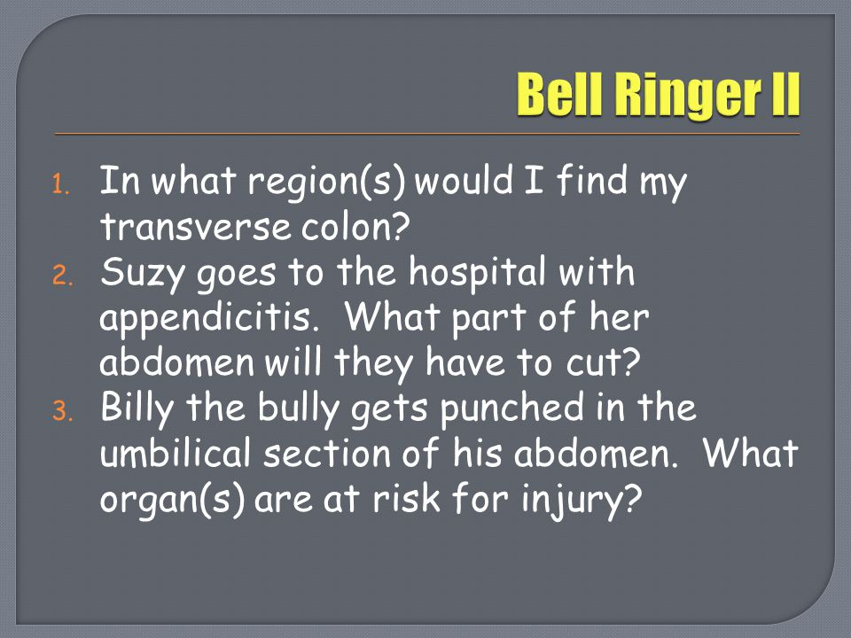 Bell Ringer II In what region(s) would I find my transverse colon