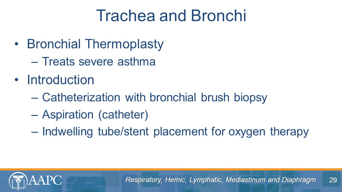 Trachea and Bronchi Bronchial Thermoplasty Introduction
