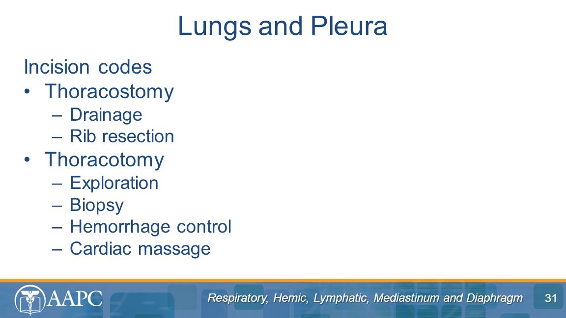 Lungs and Pleura Incision codes Thoracostomy Thoracotomy Drainage