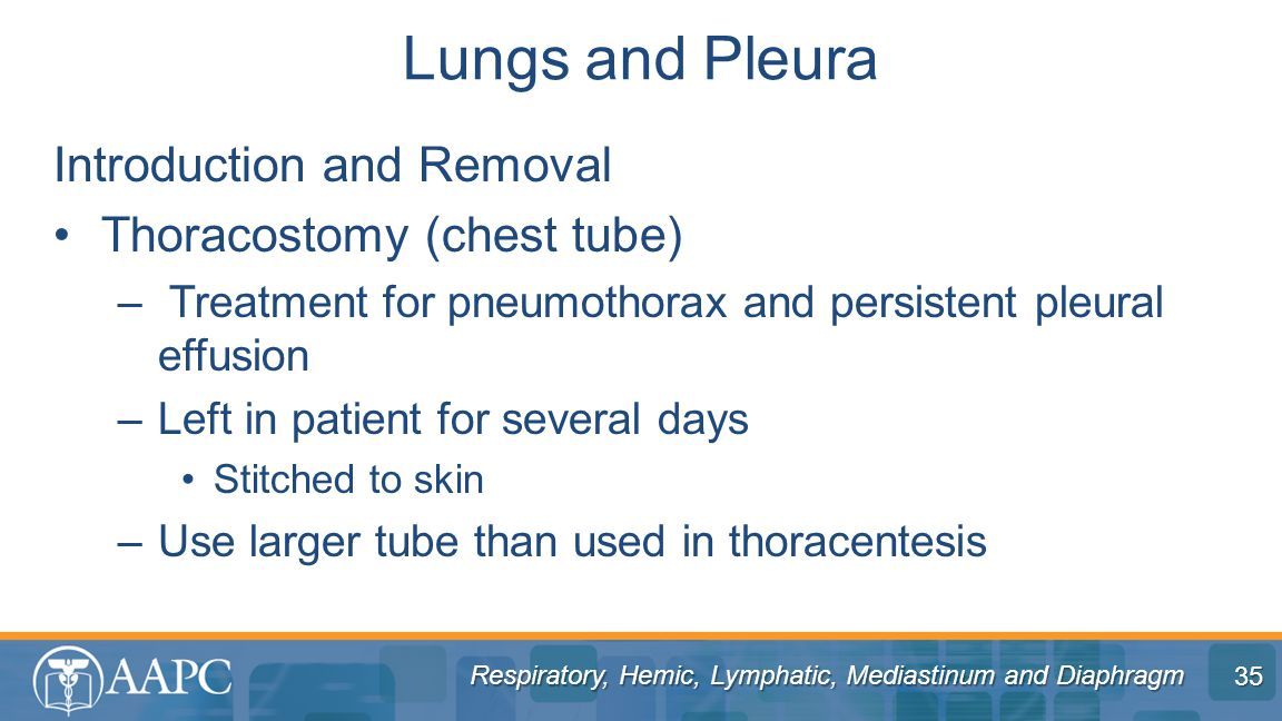 Lungs and Pleura Introduction and Removal Thoracostomy (chest tube)