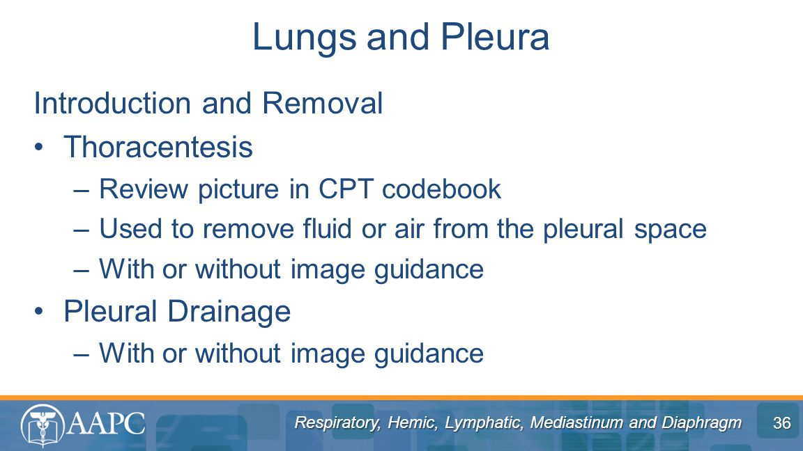 Lungs and Pleura Introduction and Removal Thoracentesis