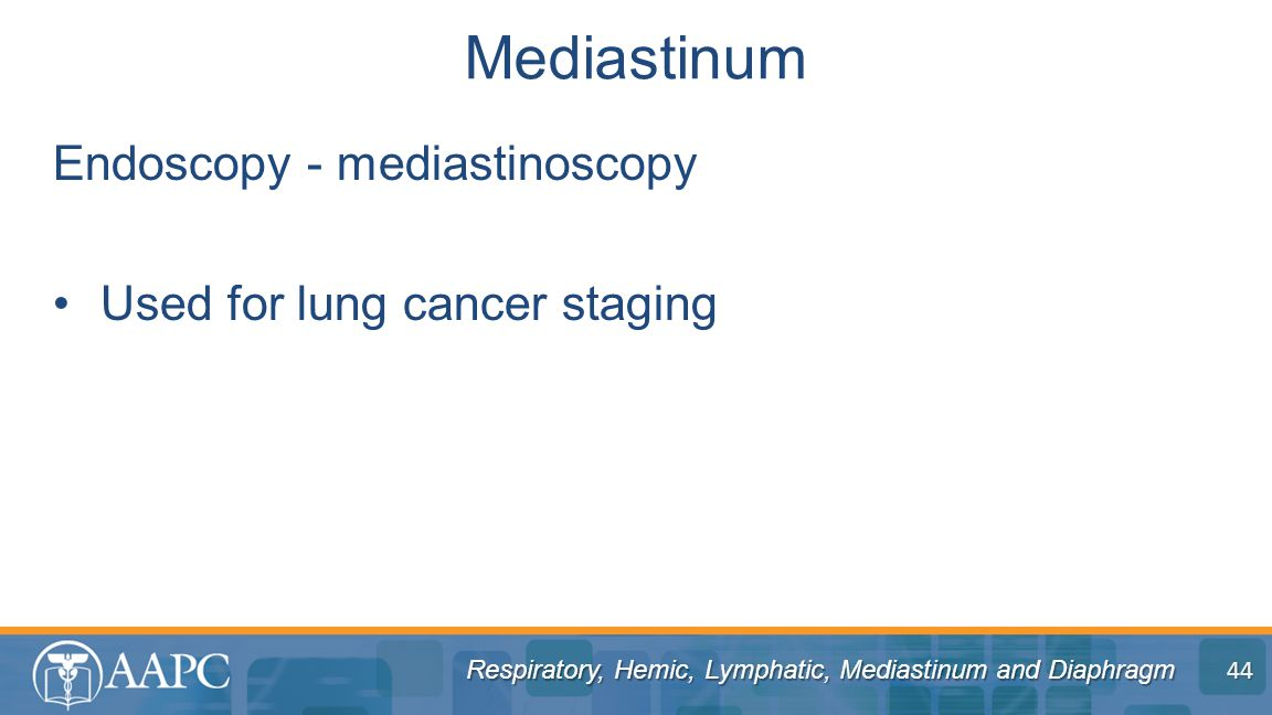 Mediastinum Endoscopy - mediastinoscopy Used for lung cancer staging